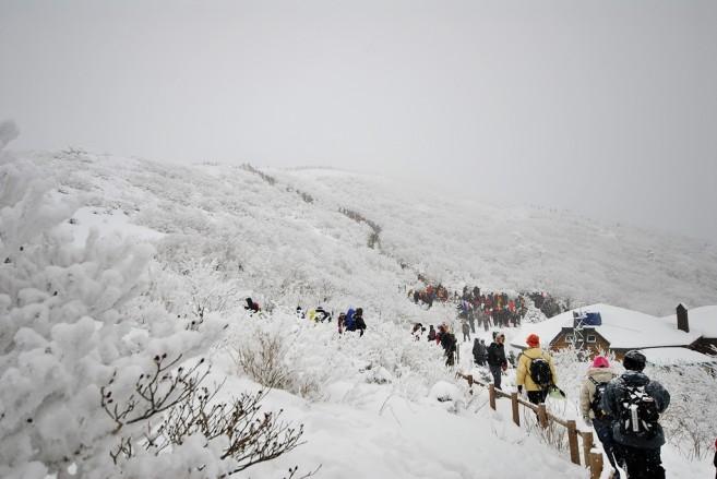 การเดินชมวิวหิมะตามธรรมชาติที่ Mt. Deogyusan ก็เป็นอีกกิจกรรมยอดนิยมในฤดูหนาวของเกาหลี