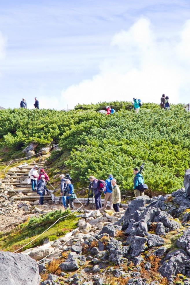 ระหว่างทางจากสถานีกระเช้าไปจนถึงยอดเขา เป็นทางเดินสำรวจธรรมชาติที่กั้นเอาไว้เรียบร้อย สามารถเดินได้โดยปลอดภัย