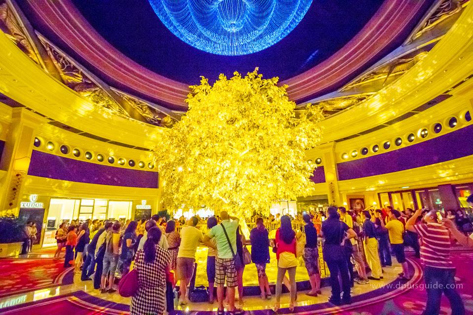 ต้นไม้สีทองต้นนี้คือ โชว์ต้นไม้แห่งความมั่งคั่ง (Tree of Prosperity) ภายในวินน์มาเก๊า รีสอร์ทค่ะ
