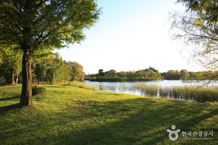 Ilsan-Lake-Park01