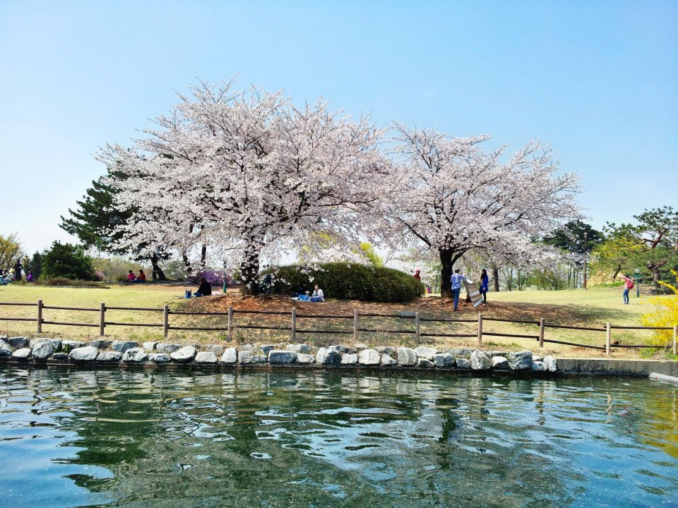 Ilsan-Lake-Park06