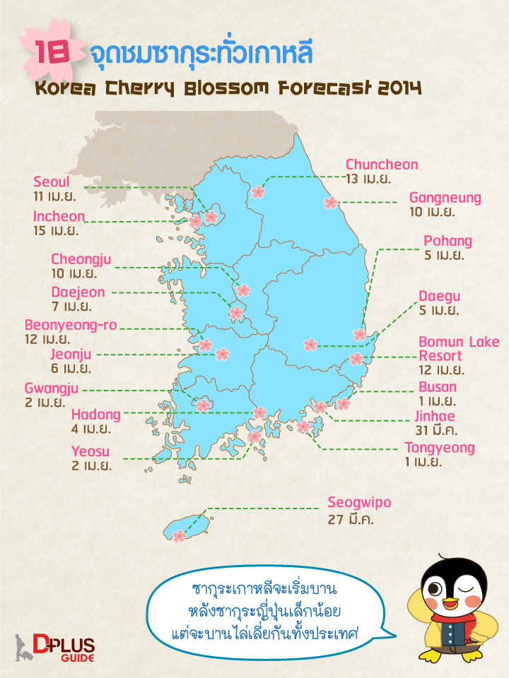 พลาดไม่ได้! 18 จุดซากุระบาน ณ แดนเกาหลี