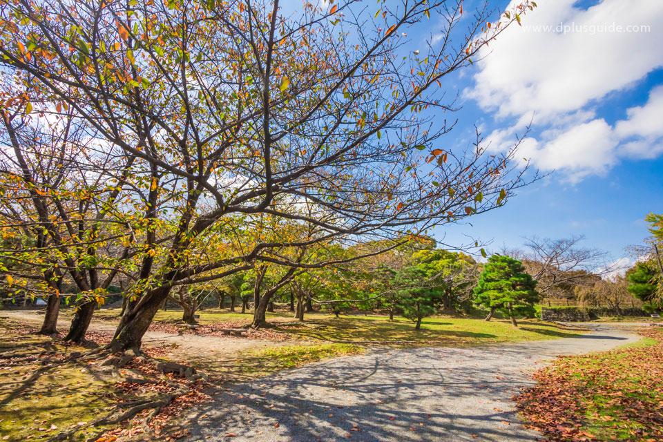 Ruins-of-Fukuoka-Castle03