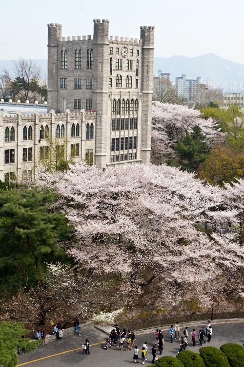 kyung-hee-university10