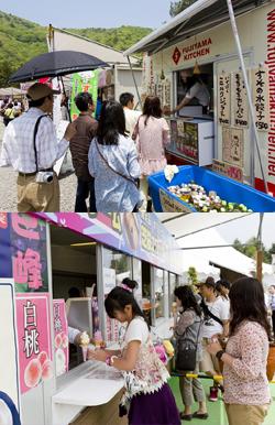 The Fuji Shibazakura Festival (富士芝桜まつり) หรือเทศกาลดอกชิบะซากุระ (Moss Phlox) ที่ภูเขาไฟฟูจิ