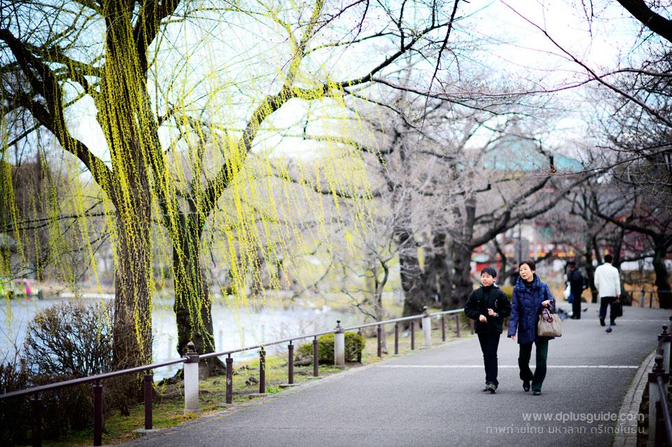ueno-park5