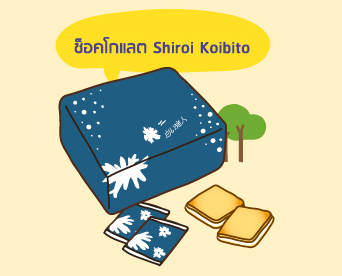 ไปฮอกไกโด ซื้ออะไรดี? รีวิวของฝากจากฮอกไกโด ช็อกโกแลต Shiroi Koibito