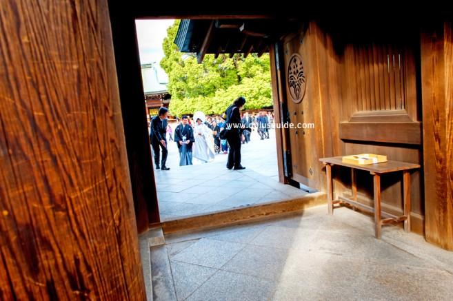 เที่ยวญี่ปุ่น ศาลเจ้าเมจิ Meiji Jingu ศาลเจ้าเก่าแก่ ที่โตเกียว