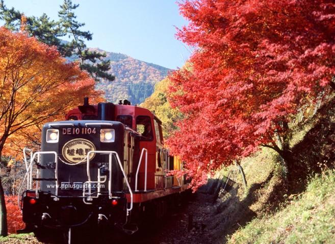 นั่งรถไฟสายโรแมนติกซากาโนะ (Sagano Scenic Railway) ชมวิวเลียบแม่นํ้าโฮสุ ที่อาราชิยามา เกียวโต
