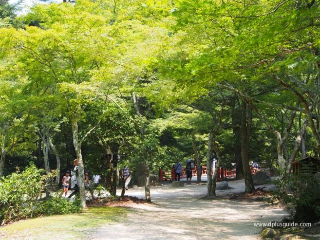 สวน Momijidani