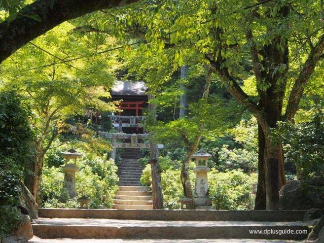 วิวสวน Momijidani