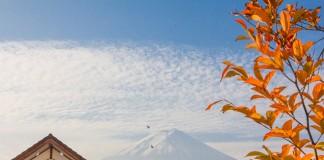 9 สถานที่ชมใบไม้เปลี่ยนสีที่ญี่ปุ่น