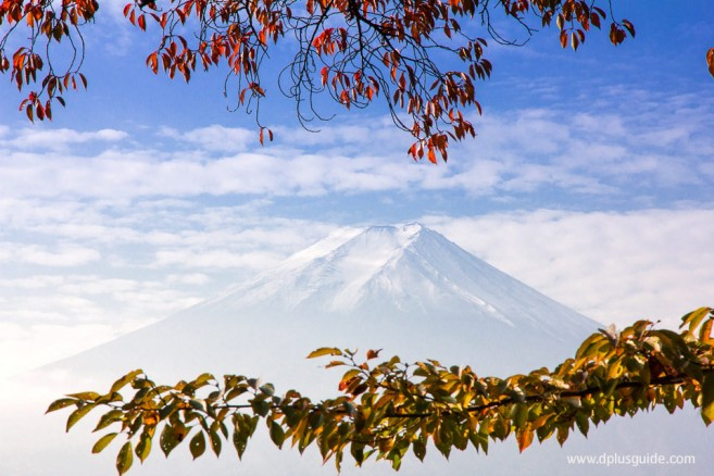 เที่ยวญี่ปุ่น เจดีย์ Chureito & ศาลเจ้า Arakura Sengen ชมวิวภูเขาไฟฟูจิ