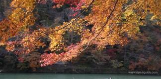 เที่ยวญี่ปุ่นชมธรรมชาติ ที่อาราชิยามา (Arashiyama) เกียวโต