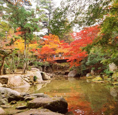ใบ้ไม้แดง ที่สวนโมมิจิดานิ (Momijidani)