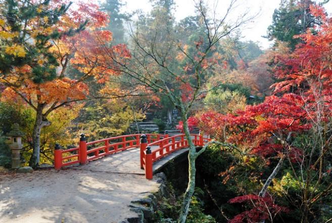 ทางเดินชมธรรมชาติ Momijidani ที่ Miyajima จังหวัด Hiroshima ภูมิภาค Chugoku