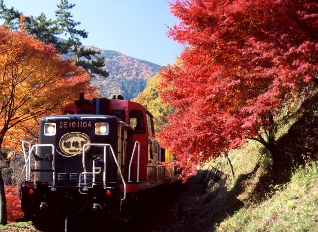 Arashiyama จังหวัด Kyoto ภูมิภาค Kansai