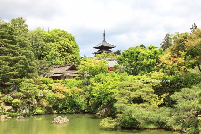 วัดนินนาจิ (Ninna-ji) สถานที่เที่ยวเกียวโต