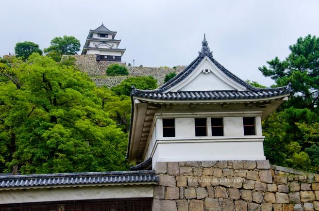ปราสาทมารุงะเมะ (Marugame Castle) แหล่งเที่ยวบนยอดเขาเมืองมารุงาเมะ จ.คากาวา (Kagawa) ที่ชิโกกุ