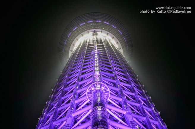 SkyTree_Purple_01