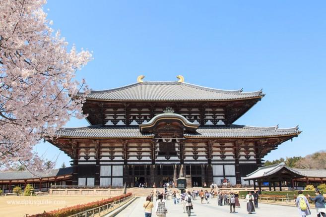 วัดโทไดจิ (Todaiji) เมืองนารา สักการะหลวงพ่อโต (ไดบุทสุ) ในวิหารไม้ใหญ่ที่สุดในโลก