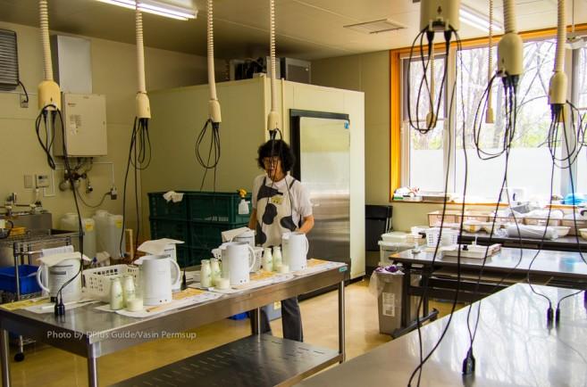 เวิร์กช็อปชีสทำมือที่ Furano Cheese Factory