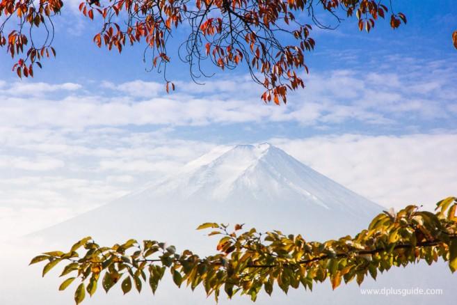ภูเขาไฟฟูจิ (Mt. Fuji) ภูเขาสูงและสวยสุดในญี่ปุ่น
