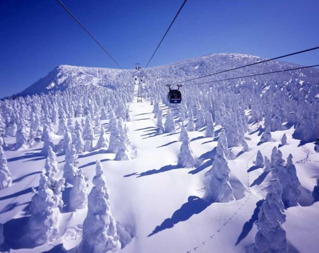 เที่ยวญี่ปุ่นฤดูหนาว เล่นสกีที่ลานซะโอ จ.ยะมะงะตะ