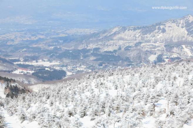 เล่นสกี ชมปีศาจหิมะ ที่เขาซะโอ จ.ยะมะงะตะ