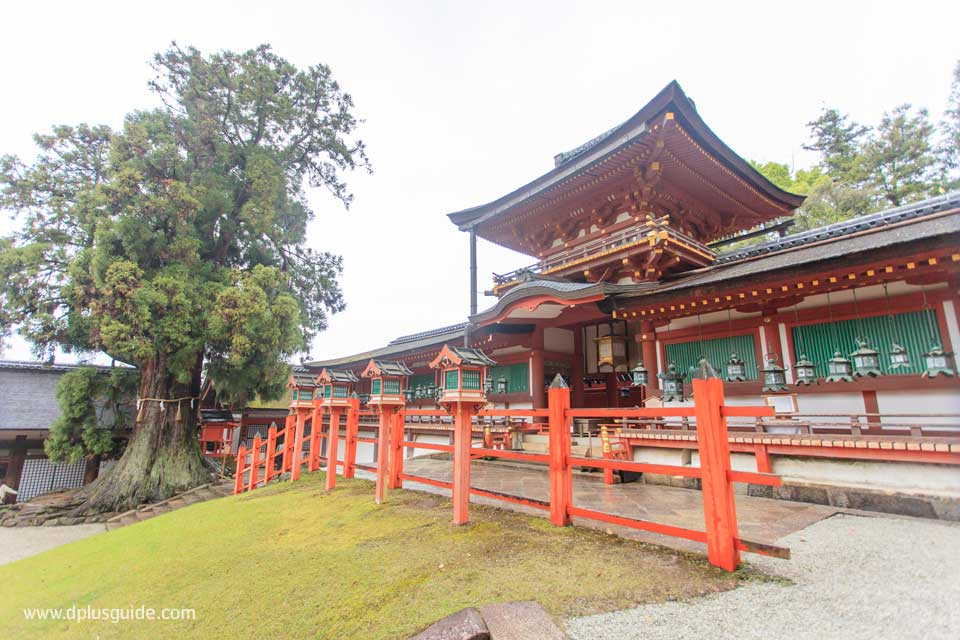 ศาลเจ้าคาซุงะไทฉะ (Kasuga Taisha Shrine) มรดกโลก ที่เมือง ...