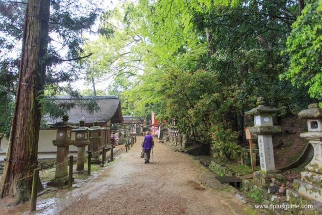 Kasuga Taisha Shrine 08