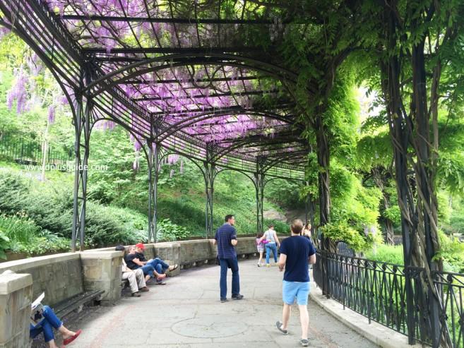 เที่ยวนิวยอร์ก ชมสวน Conservatory Garden ในเซนทรัลพาร์ค