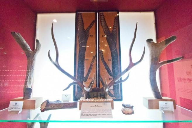 Seoul-Yangnyeongsi-Herb-Medicine-Museum_9402