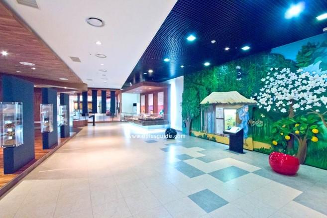 เที่ยวเกาหลี พิพิธภัณฑ์สมุนไพรใจกลางเมือง Yangnyeongsi Herb Medicine
