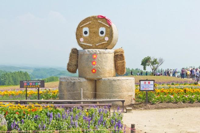 สวน Shikisai-no-Oka จุดแวะสำคัญของเส้นทางปั่นจักรยานเที่ยวฮอกไกโด Panorama Road ที่ Biei