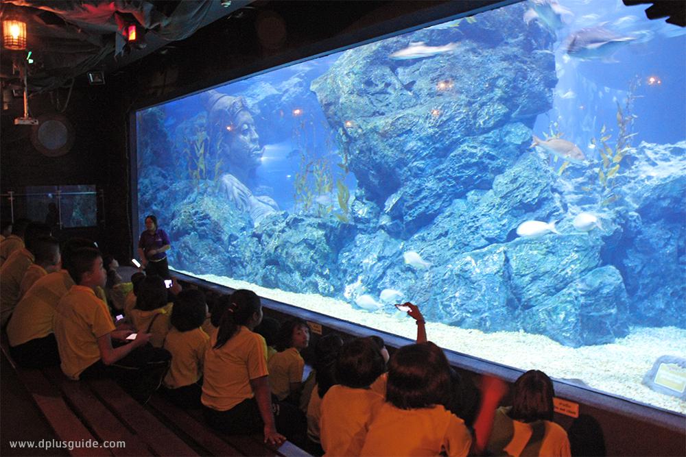 """Amazing Creations มหัศจรรย์วาดฝันใต้ทะเลลึกเหนือจินตนาการ"" ที่ SEA LIFE Bangkok Ocean World กรุงเทพฯ"
