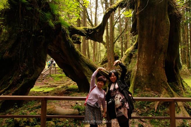 มาเที่ยวไต้หวันต้องเดินป่าชมธรรมชาติ!
