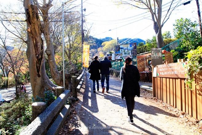 nature-trip-around-tokyo_MG_9329