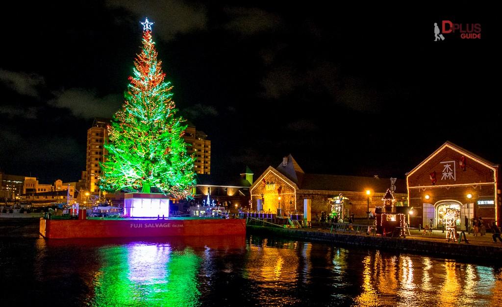 เที่ยวฮอกไกโด โกดังอิฐแดงกับต้นคริสต์มาสยักษ์ เมืองฮาโกดาเตะ