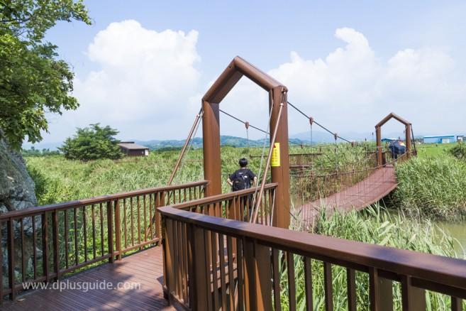 ดื่มด่ำกับธรรมชาติที่ Suncheonman Bay Ecological Park (구, 순천만자연생태공원)