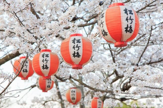 เที่ยวญี่ปุ่น สวนสาธารณะมารุยามา (Maruyama Koen)