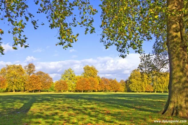 สวน HYDE PARK ที่อังกฤษ อยู่ติดกับสวน Kensington Garden
