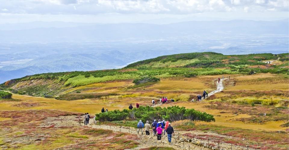 เที่ยวฮอกไกโด ชมใบไม้เปลี่ยนสี ที่อุทยานไดเซ็ตสึซัง ฝั่งอาซาฮิดาเกะ (Asahidake)