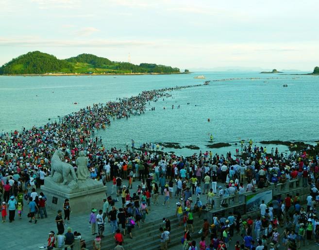 """ฤดูนี้มีเทศกาล Jindo Sea Crossing Festival ที่คนจะ """"เดิน"""" แหวกทะเลกันด้วยค่ะ"""