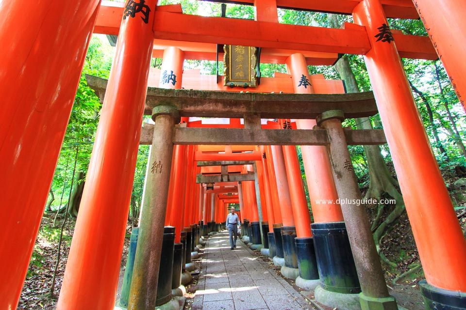 เที่ยวญี่ปุ่น ชมอุโมงค์โทริอิ ที่ศาลเจ้าฟูชิมิอินาริ (Fushimi Inari Shrine) หรือศาลเจ้าจิ้งจอกขาว เกียวโต