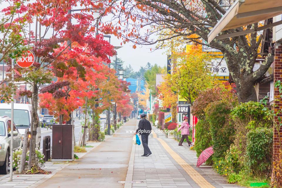 เที่ยวญี่ปุ่นชมใบไม้เปลี่ยนสี ที่เมืองน่ารัก Karuizawa จังหวัด Nagano