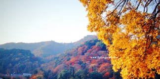 ชมทิวทัศน์ภูเขาอาราชิยามา ที่สะพานโทเง็ตสึเคียว (Togetsukyo) เกียวโต (Kyoto)
