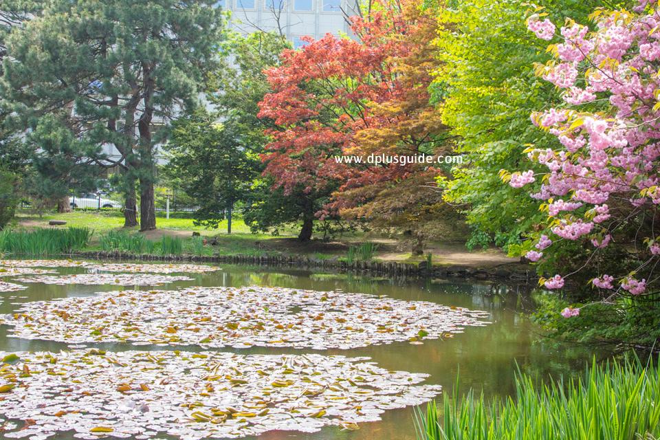 บริเวณโดยรอบจัดแต่งให้เป็นสวนพักผ่อน มีทั้งบึงน้ำและต้นซากุระ