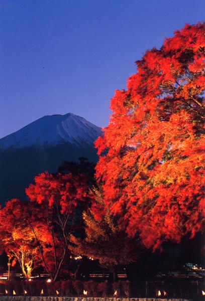 Fuji Kawaguchiko Autumn Leaves Festival 1-30 พ.ย. นี้ ที่ คาวากูชิโกะ (Kawaguchiko)