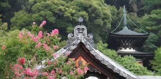 เที่ยวญี่ปุ่นชมใบไม้เปลี่ยนสี ที่วัดเอคันโด (Eikando) เกียวโต